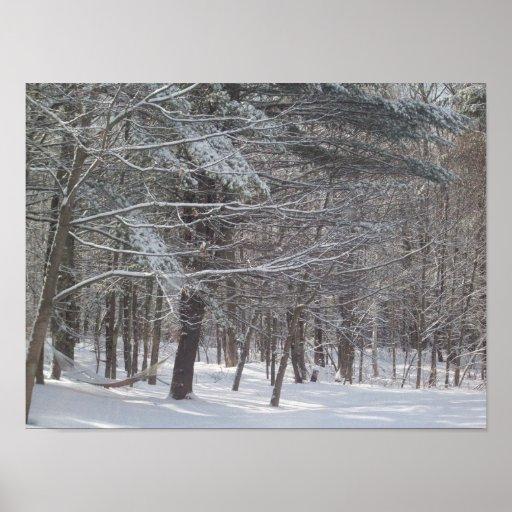 Invierno de Maine Póster