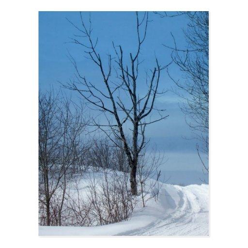 Invierno de Maine Tarjeta Postal