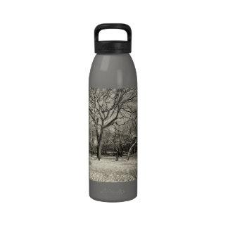 Invierno de Nueva York - nieve del East Village Botella De Agua