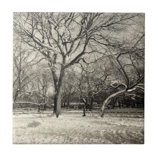 Invierno de Nueva York - nieve del East Village Azulejo Cuadrado Pequeño