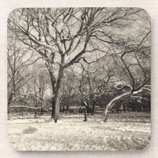 Invierno de Nueva York - nieve del East Village Posavaso