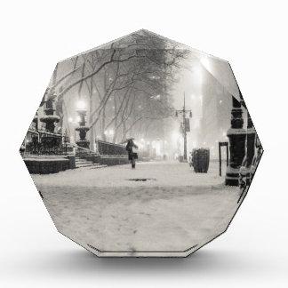 Invierno de Nueva York - noche Nevado - parque de