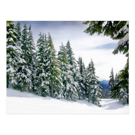 Invierno de Oregon Tarjeta Postal