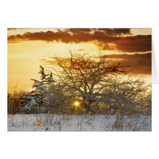 Invierno de Vermont de la puesta del sol Tarjeton