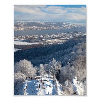 Invierno de Zurich Suiza Cojinete