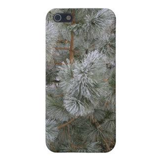 ¡Invierno del amor! iPhone 5 Carcasa