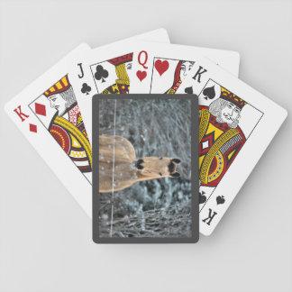 Invierno del ante cartas de juego