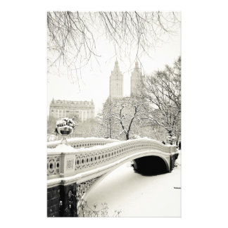 Invierno del Central Park - nieve en el puente del Papelería De Diseño