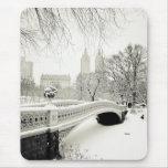 Invierno del Central Park - nieve en el puente del Tapetes De Ratón