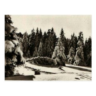 Invierno del d'Hiver de Paysage en las montañas Postal