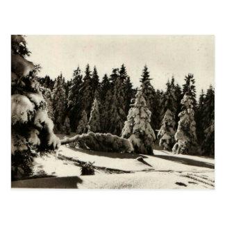 Invierno del d'Hiver de Paysage en las montañas Tarjeta Postal