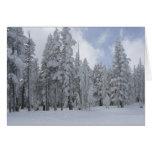 Invierno del lago Tahoe Felicitacion