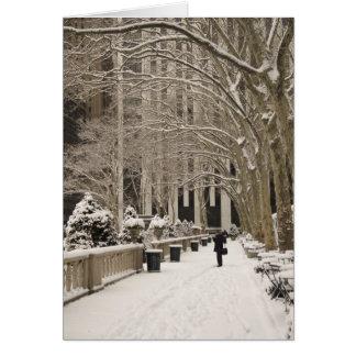 Invierno del parque de Bryant Tarjeta De Felicitación