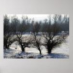 invierno - el río Danubio en día escarchado Posters