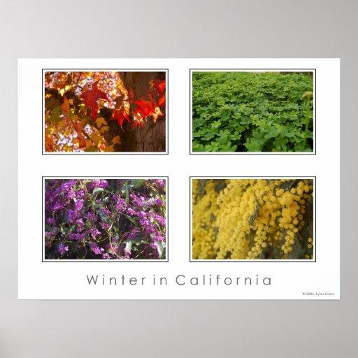 Invierno en California Póster