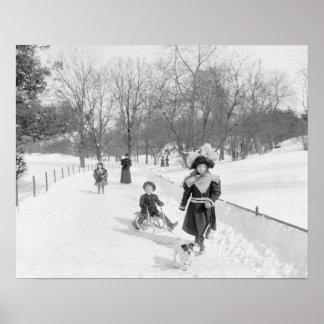 Invierno en Central Park, 1900 Poster