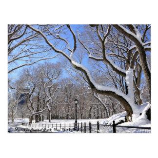 Invierno en Central Park, New York City Postal