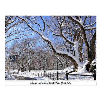 Invierno en Central Park, New York City Tarjeta Postal