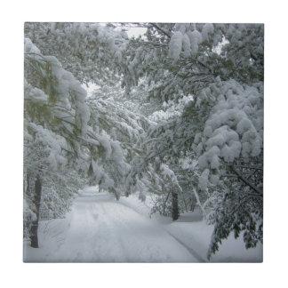 Invierno en el bosque azulejo cuadrado pequeño