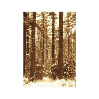 Invierno en el bosque impresion en lona