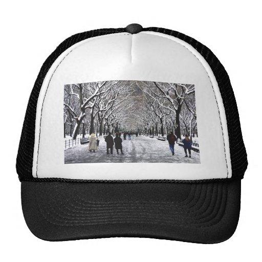 Invierno en el Central Park NYC Gorro