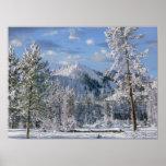 Invierno en el parque nacional de Yellowstone, Wyo Poster