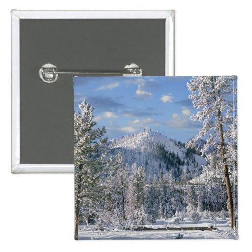 Invierno en el parque nacional de Yellowstone, Wyo Pins