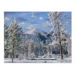Invierno en el parque nacional de Yellowstone, Wyo Postal