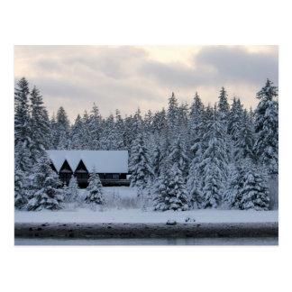 Invierno en el parque nacional del Glacier Bay Tarjetas Postales