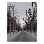Invierno en Estrasburgo Postal