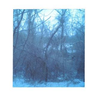 Invierno en los productos de bosque blocs