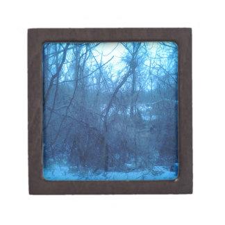 Invierno en los productos de bosque caja de recuerdo de calidad