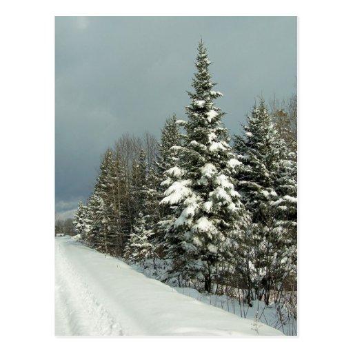 Invierno en Maine Tarjeta Postal