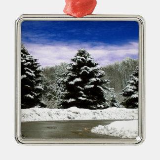 Invierno en Nueva Inglaterra Adornos De Navidad