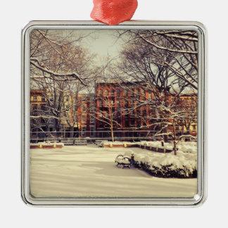 Invierno hermoso de Nueva York Adornos De Navidad