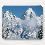 Invierno magnífico de Teton Alfombrillas De Ratón