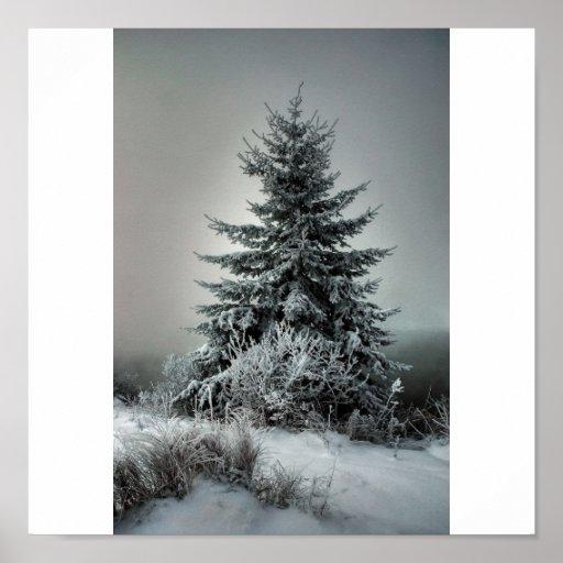 Invierno majestuoso póster