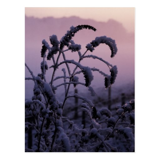 Invierno, Norfolk, Inglaterra - postal