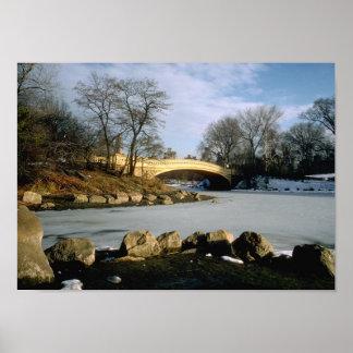 Invierno NYC del Central Park del puente del arco Poster