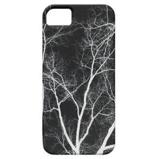 Invierno oscuro Forrest iPhone 5 Fundas