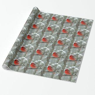 (Invierno) papel de embalaje cardinal rojo