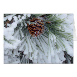 Invierno Pinecone Felicitación