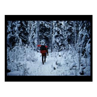 Invierno que hace excursionismo en la fauna nacion tarjetas postales