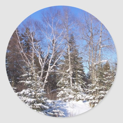 Invierno septentrional 10 de Maine Pegatina Redonda