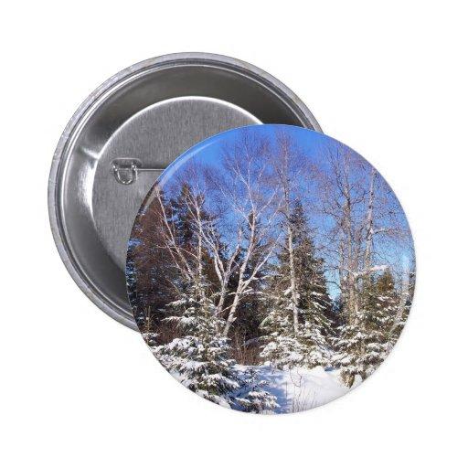 Invierno septentrional 10 de Maine Pin Redondo 5 Cm