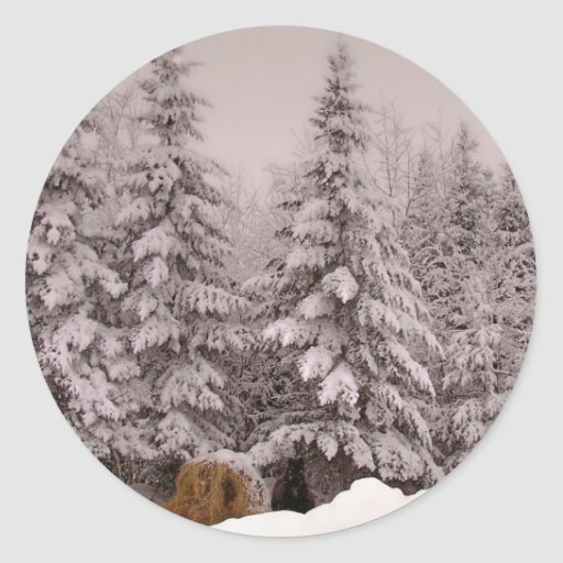 Invierno septentrional 6 de Maine Pegatina Redonda