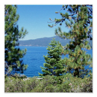 Invigorating Lake Tahoe Blue Water & Green Forest Poster