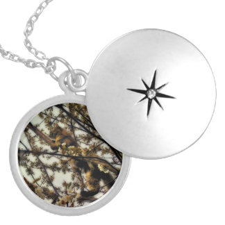 Invisible Round Locket Necklace