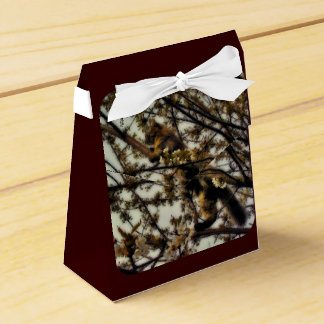Invisible Party Favor Boxes