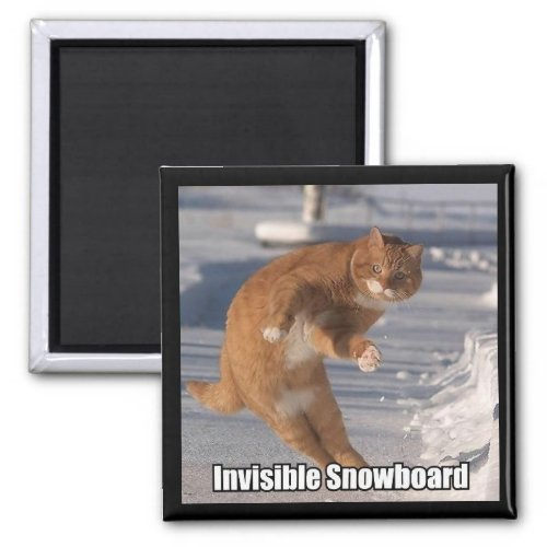 invisible snowboard magnet magnet